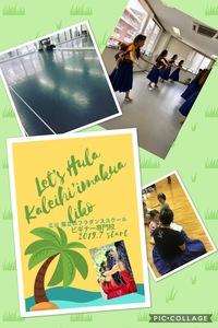 立川・国立・調布・オンラインレッスンで踊る・学ぶハワイアンフラダンス カレイヒイマクア