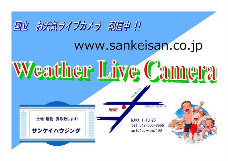 お天気ライブカメラ 富士見通り 国立駅方面をのぞむ